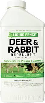Top 6 Best Rabbit Repellents 2020 Review Pest Strategies