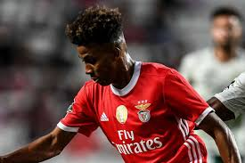 Tottenham sign Gedson Fernandes from Benfica on 18-month loan deal ...