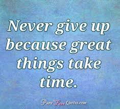 never give up because great things take time purelovequotes