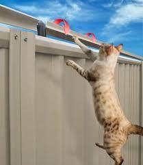 30 Cat Fencing Ideas Cat Fence Cat Proofing Cat Enclosure