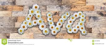Daisy Name Ava Wood Background Stock Illustration - Illustration of design,  color: 85446208