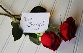 jenis bunga tepat untuk nyatakan maaf outerbloom