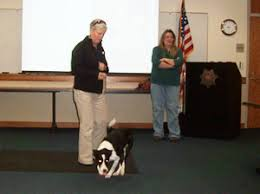 Historical Human Remains Detection Canines | Santa Cruz Archaeological  Society