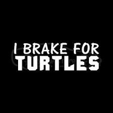 I Brake For Turtles Sticker Car Truck Decal Cute Animal Gift Tortoise Slow Love Ebay