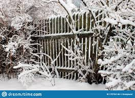 Snow Covered Wooden Fence In A Winter Garden Stock Photo Image Of Cloud Heavy 170704146