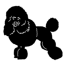 14 12 8cm Miniature Poodle Dog Car Tail Stickers Lovely Vinyl Decal Car Styling Truck Accessories Black Silver S1 0962 Accessories Keyboard Accessories Dsaccessories Price Aliexpress