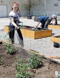 Gardening From The Heart Youths Collaborate On Health Focused Program People Codyenterprise Com