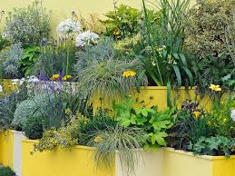 small spaces container gardens amp