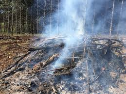 Oregon Smoke Information: This autumn may see more controlled burns in  Oregon