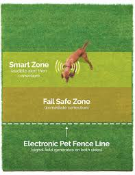 Electric Dog Fence Installation 1 Hidden Dog Fence Pet Stop Atlanta