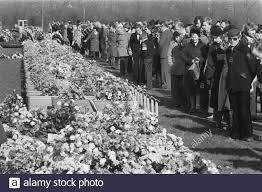 Image result for The Tenerife crash victems