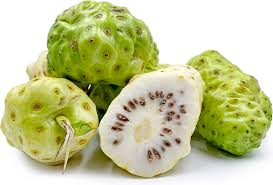 noni fruit information recipes and facts