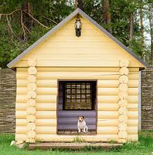 The Top 5 Dog House Choices For The Rich And Famous Dog