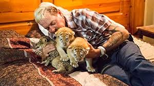 images?q=tbn%3AANd9GcS60F6JPLjYQpHDOLtsz 3WZS46 eeAzlILhnqTRT0VwnWrX zZ&usqp=CAU The Tiger King: A fantastic binge-worthy series on Netflix about a man who, before being sentenced to prison, owned a literal zoo, with many, many LARGE cats, is gaining more and more momentum. Popularity is rising, and with that comes some notoriety.