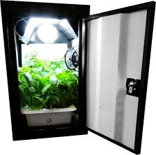 10 best stealth grow box cabinet