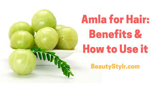 amla for hair 11 benefits and 12 ways