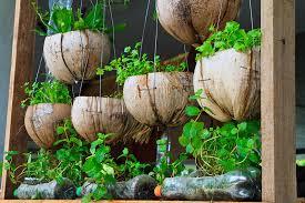 25 Incredible Vegetable Garden Ideas Trees Com