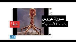 هذا رسم تصويري لـ فيروس ملتهم للبكتيريا وليس لفيروس كورونا