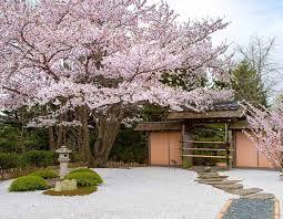 12 stunning japanese gardens in america