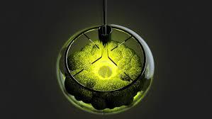 clear glass bowl green living moss