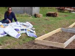 Starting to Build the World's Most Fertile Raised Bed - YouTube