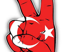 Brazil World Flag Hand Peace Sign Car Bumper Sticker Decal 6 Or 8 3 5 Children S Bedroom Boy Decor Decals Stickers Vinyl Art Home Garden Map India Org