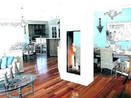 dual sided fireplace insert double