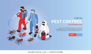 Pest Images, Stock Photos & Vectors | Shutterstock