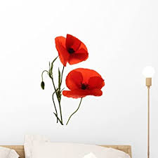 Amazon Com Wallmonkeys Red Poppy Flowers Wall Decal Peel And Stick Graphic 18 In H X 12 In W Wm71737 Home Kitchen