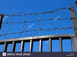 Barb Barbed Wire Security Fence Fencing Gate Stock Photo Alamy