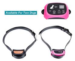 M Tronic Wireless Dog Fence Review Dog Equipment Expert