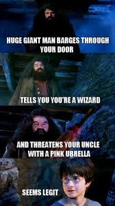 best harry potter memes funny pictures hp