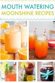 homemade moonshine recipes fun drink