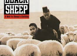 how black sheep stood out from the herd
