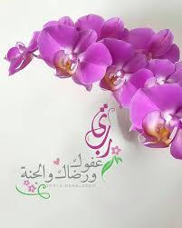 يا رب عفوك و رضاك والجنة Petals Eid Mubarak Flowers