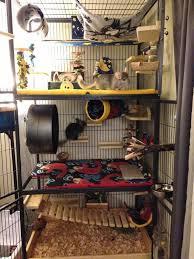 diy rat cage 113 meowlogy