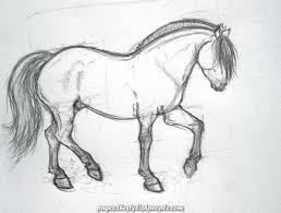 The Fjord Horse Synekdokee Devian On Deviantart In 2020