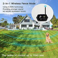 Top 8 Invisible Fence For Cats Of 2020 Best Reviews Guide