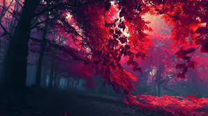widescreen wallpaper red tree