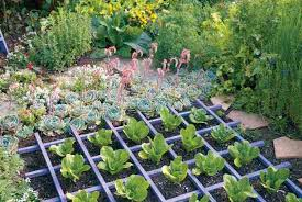 yard how to design an edible landscape