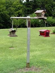 a bird feeding station that bites