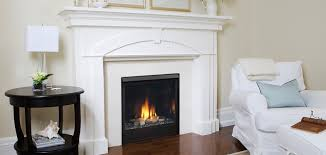 patriot direct vent gas fireplace bay