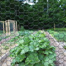 48 High 1 Hex Mesh Fence Black Vinyl Coated 150 Roll