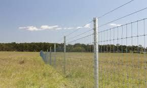 How To Maintain Farm Fencing Get Livestock