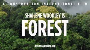 nature is speaking shailene woodley is forest