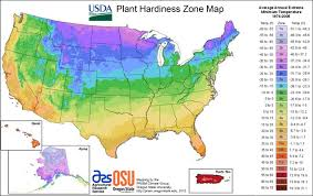 hardiness zones texas home and garden