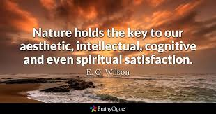 e o wilson nature holds the key to our aesthetic