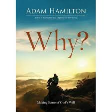 Why? - By Adam Hamilton (Paperback) : Target