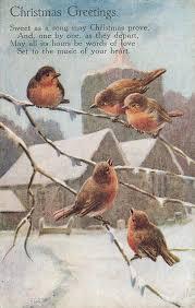 Birds   Read, Seen, Heard