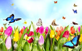 Spring (primavara) Images?q=tbn%3AANd9GcS7-hiqQ0Izv_dSfmTVHM9xQkW2jo9RQbgFLzxbDCrqm6XI8W5F